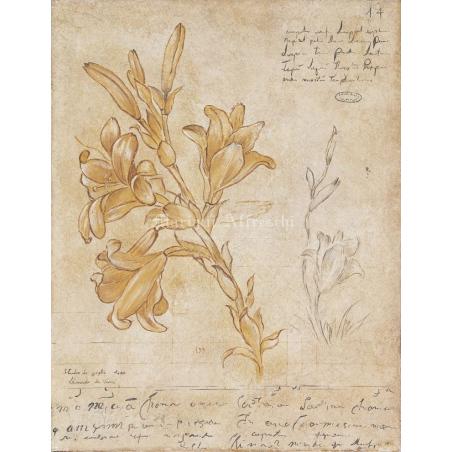 Фрески Mariani Affreschi эпоха Возрождения - Фото 11
